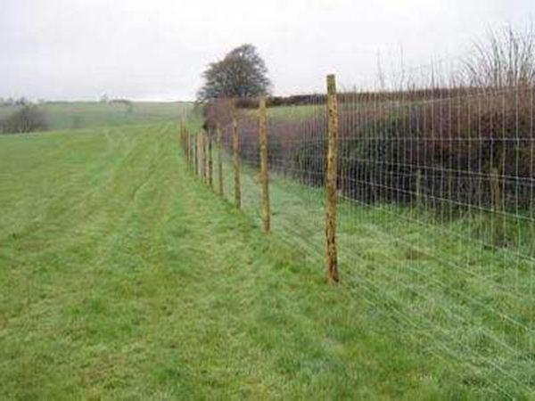草原护栏网