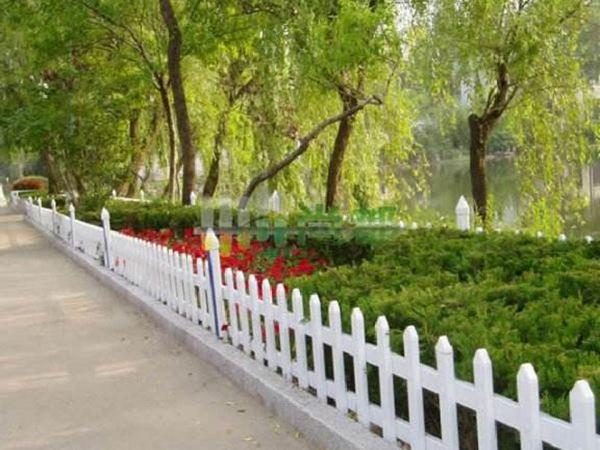 绿化护栏 - 安平县中泽丝网制造有限公司图片2